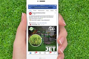 BONANZA GRASS<br>Social Media